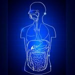 Chronic Gastrointestinal Disorder: Part Two