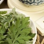 Herbs as Bitters: It's a Matter of Degree