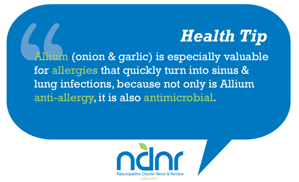 Allium (onion & garlic) is especially valuable for allergies that quickly turn into sinus & lung infections because not only is Allium antiallergy it is also antimicrobial