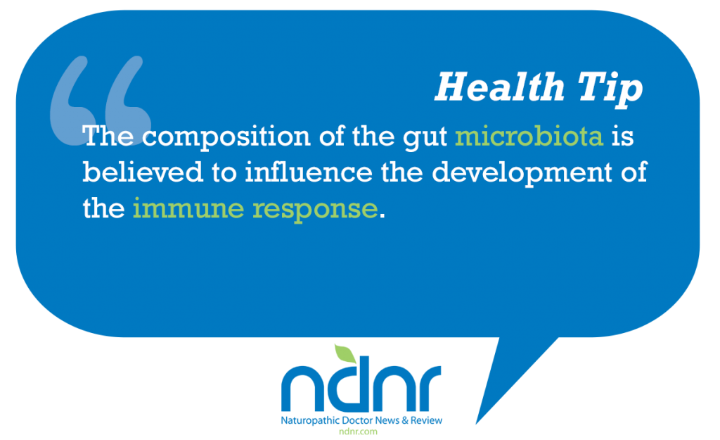 The composition of the gut microbiota is believed to influence the development of the immune response