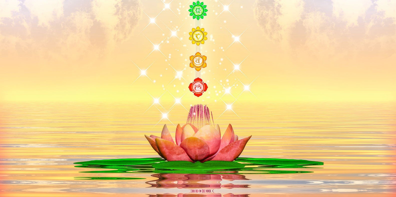 Naturopathic Chakra Medicine Spinning The Energetic Centers