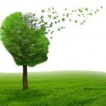 Ayurvedic Approaches to Prevent and Manage Alzheimer Disease