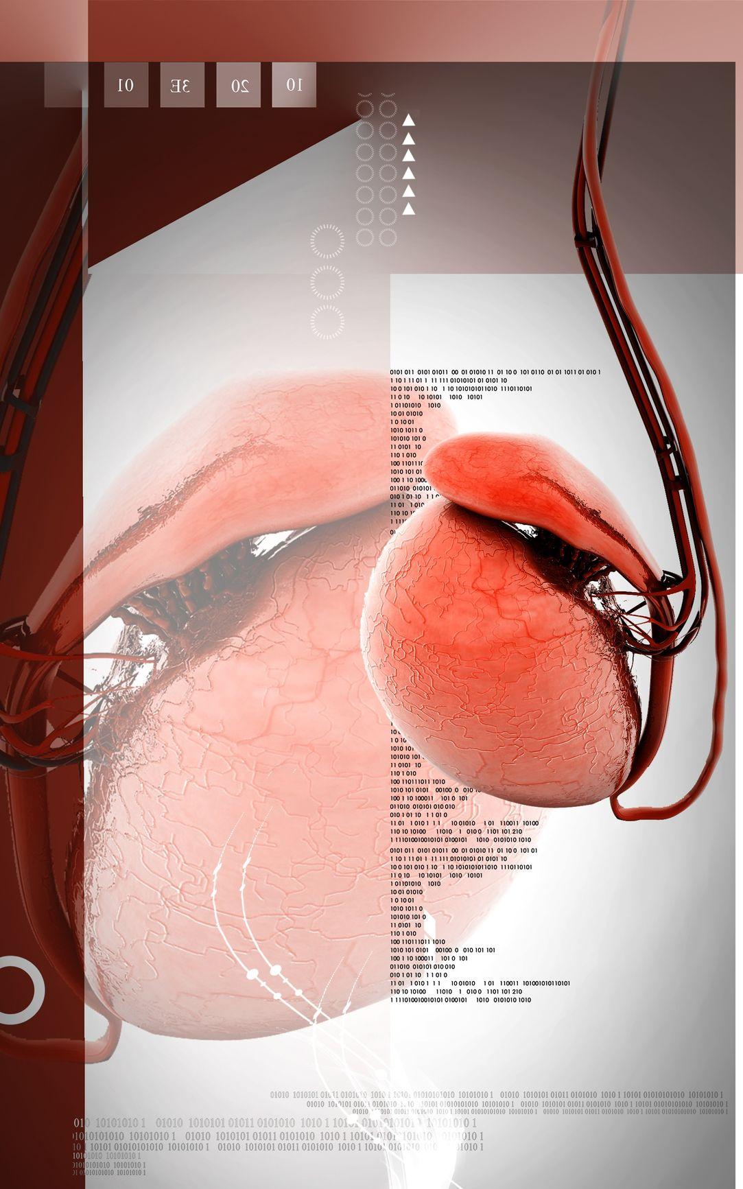 Krónikus prosztatagyulladás 18 éves korig 18 éves krónikus prosztatagyulladás