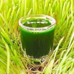 Wheatgrass Juice in the Treatment and Prevention of Cancer