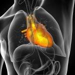 Advanced Testing for Cardiovascular Disease: Examining Lipoproteins