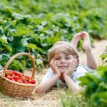 Organic Diet Causes Pesticide Levels to Plummet in Children