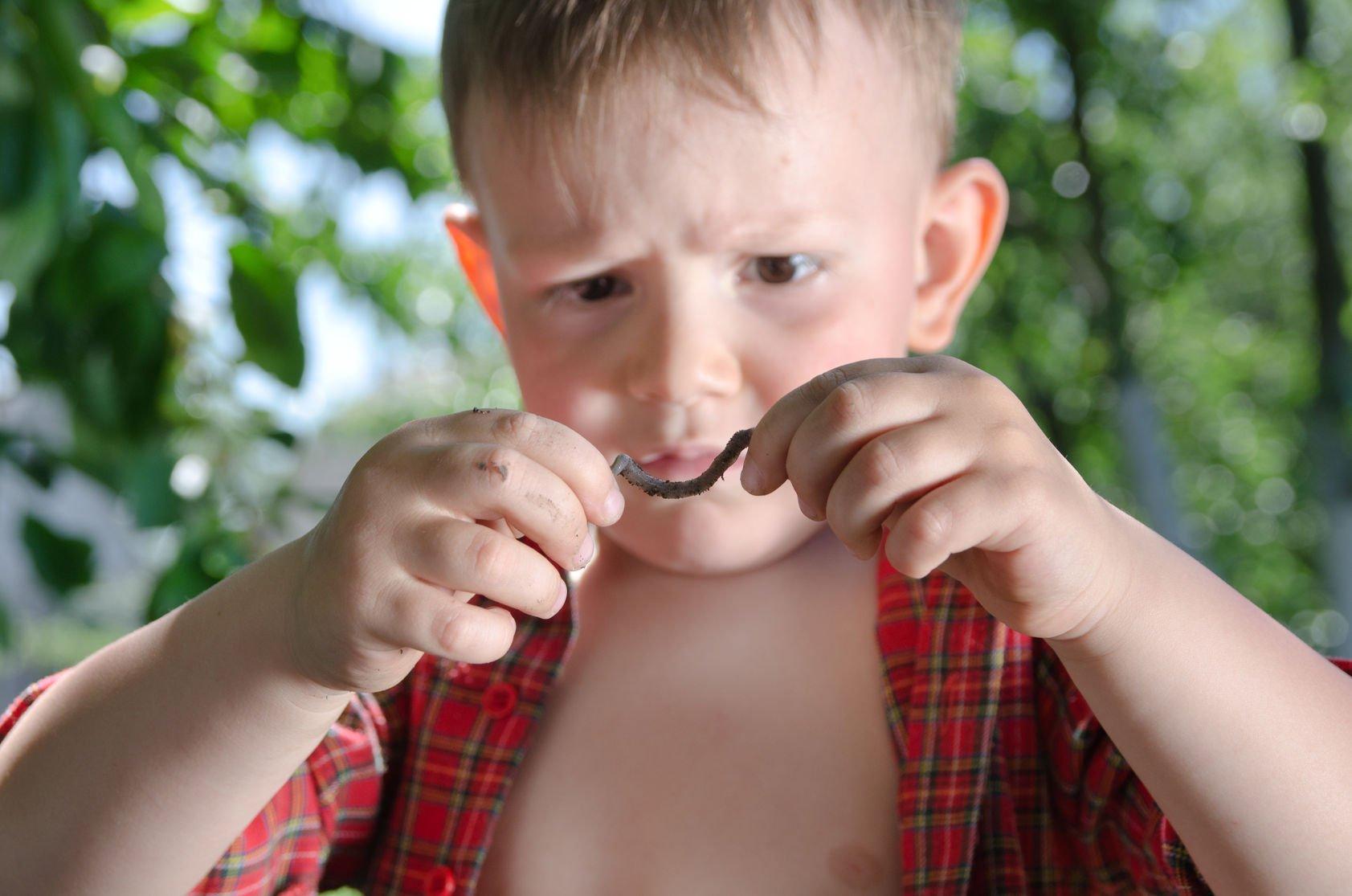 Острицы симптомы фото лечение у детей