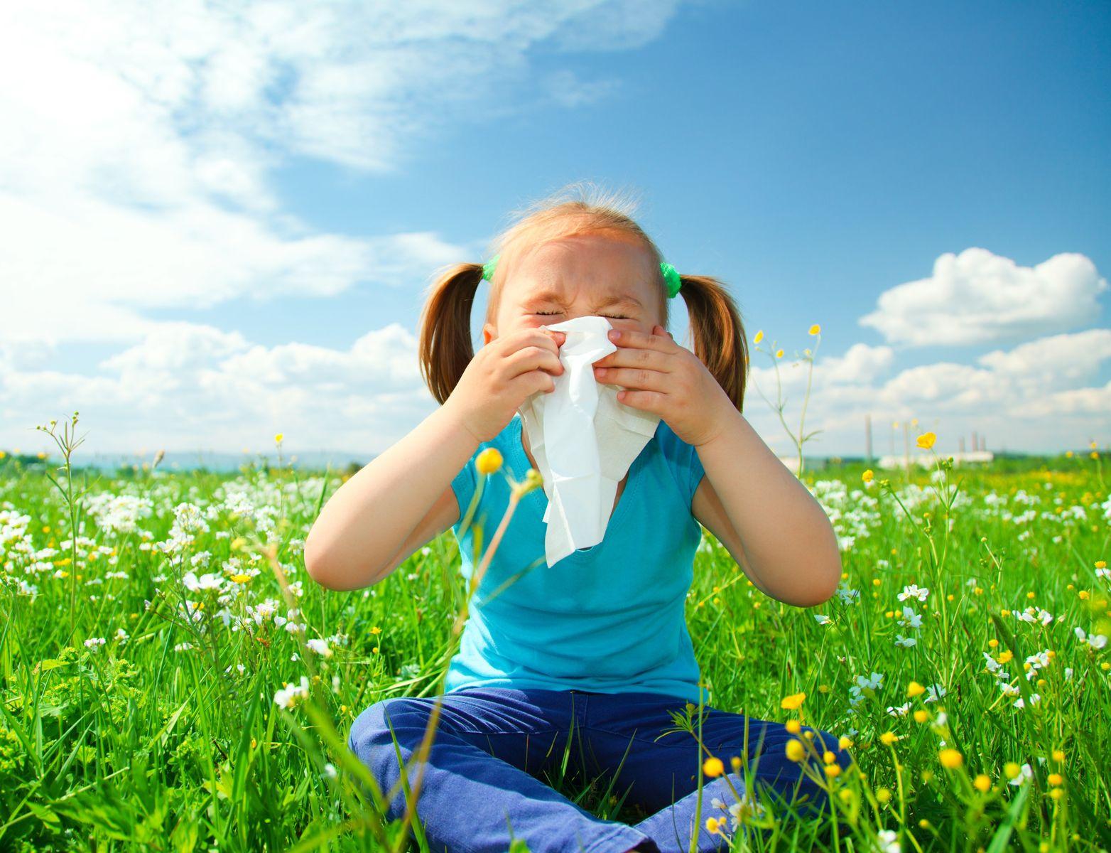 Summer allergies in children: allergens and treatment