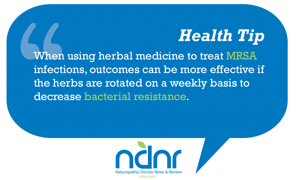 When using herbal medicine to treat MRSA infections outcomes can be more effective if the herbs are rotated on a weekly basis to decrease bacterial resistance