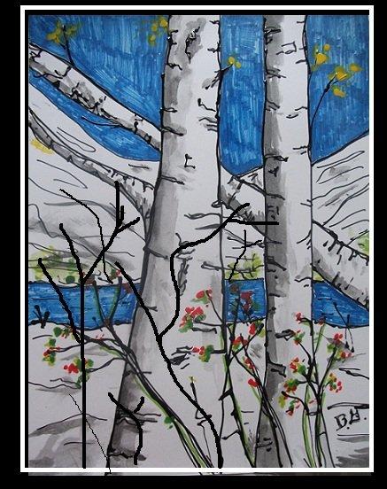 birch trees 4