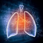 The Lungs Actually Produce Blood Cells