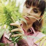 Marijuana Dosing for Anxiety, Studied