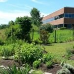 Maryland University of Integrative Health to Open School of Naturopathic Medicine in Fall 2018