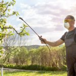 Why Does Pesticide Exposure Increase Parkinson's Risk in Some?