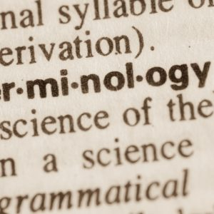 38374747 - definition of word terminology in dictionary