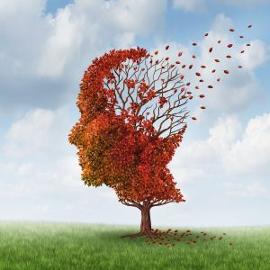 20235880 - brain disease with memory loss due to dementia and alzheimer