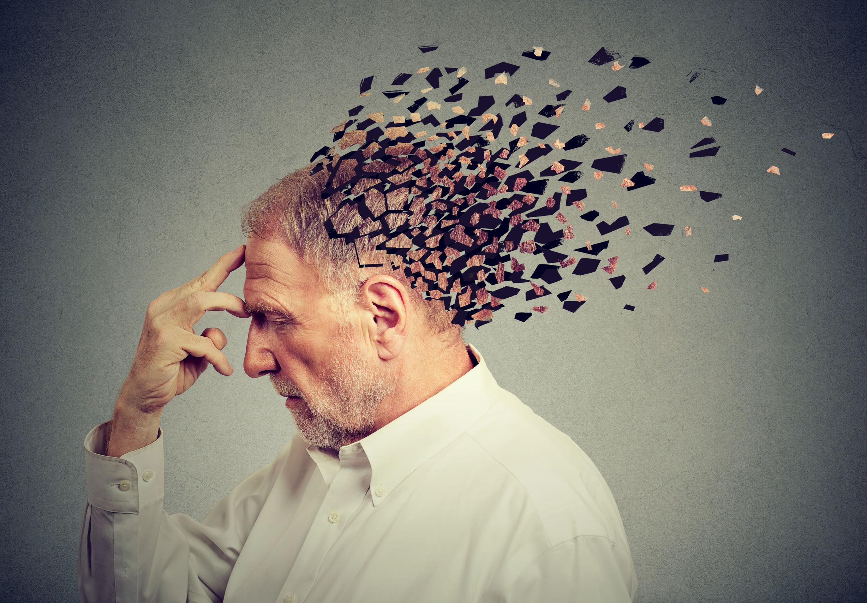 Cérebro pode criar falsas memórias quando se atualiza – Naturopathic Doctor News and Review