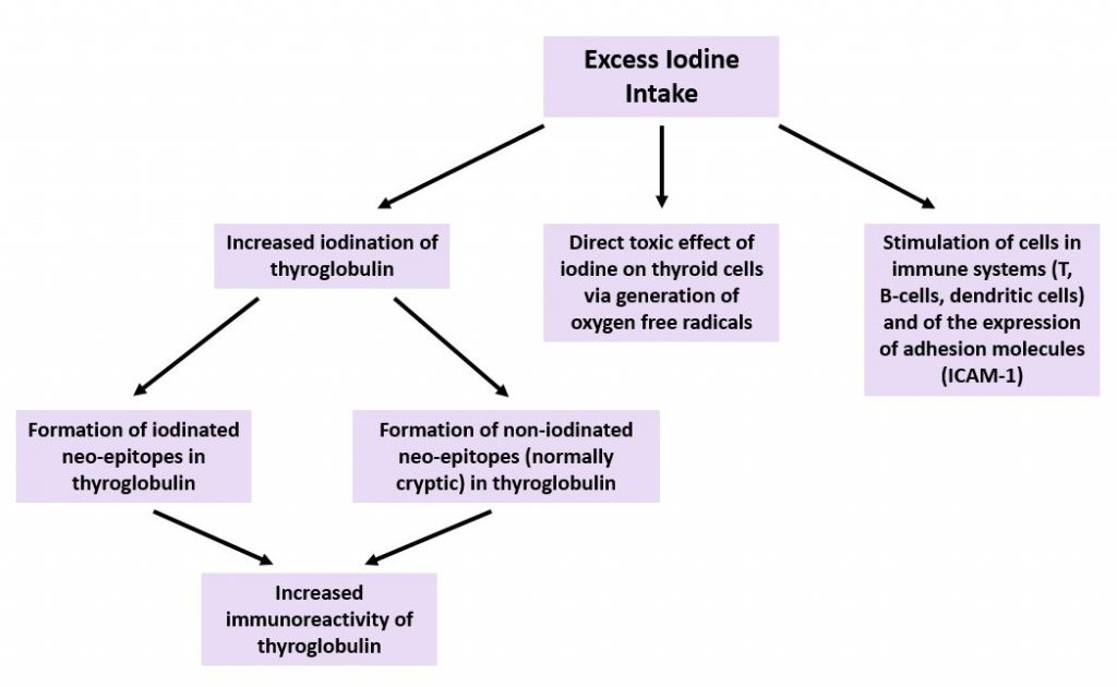 Iodine Regulation: A Way to Improve Thyroid Disease – Naturopathic Doctor News and Review