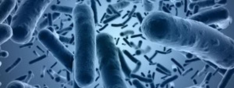 Chronic Diarrhea After C difficile Eradication
