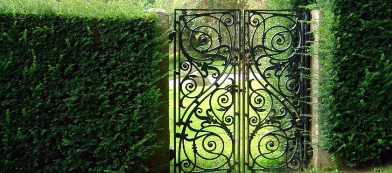 "The ""Gate Effect"": Understanding Its Mysteries to Optimize Your Practice"