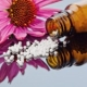 Homeopathy: Keynotes & Restoration of Health