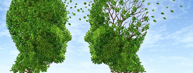 Age-Related Cognitive Decline