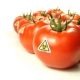 Genetically Modified Food and Your Health: Potential Dangers