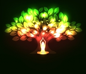 Using Plants to Treat the Spirit