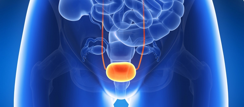 Interstitial Cystitis: The Role of Myofascial Therapy