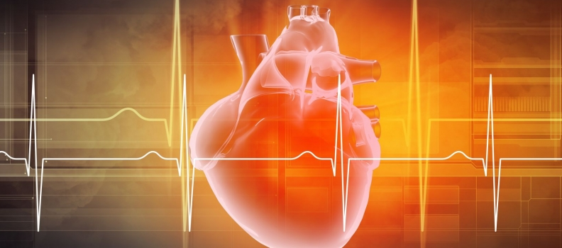 Heart Rate Variability: The Why, What, and How of HRV and Its Importance  in Private Practice – Part 2