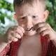 Eating Worms May Inhibit Allergies, Asthma and Autoimmune Disease