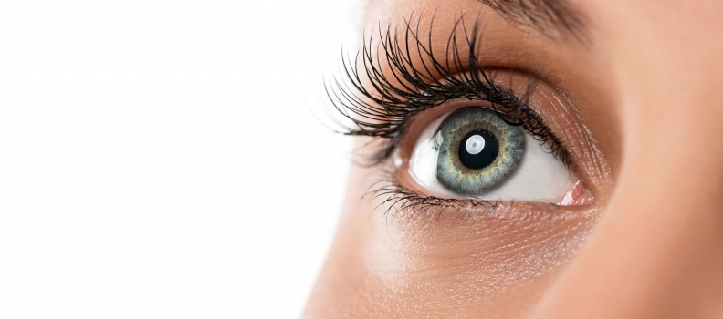 Natural Eye Therapies You Can Use Now: 2011 Update