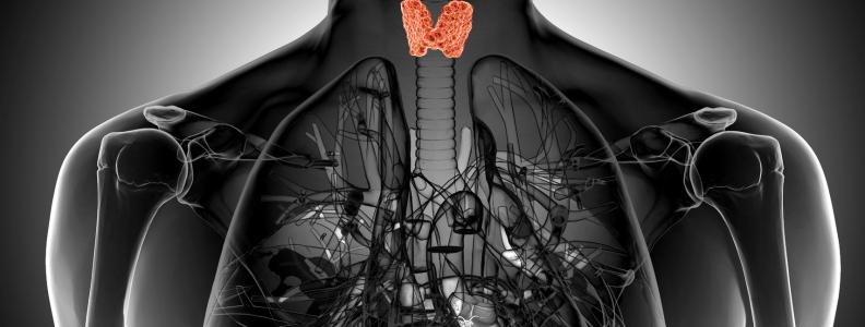 Graves Disease and Entamoeba histolytica