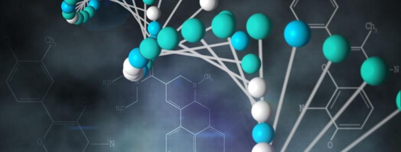Epigenetics- Helping to explain positive outcomes