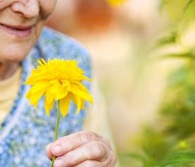 Nature Prescription: The Missing Link in Dementia Treatment