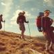 The Wellness Journey