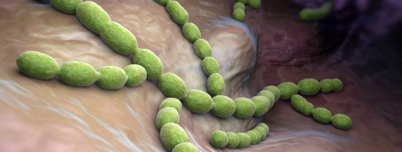 Botanical Treatment of Community-Acquired Pneumonia