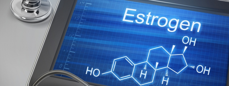 Neurons Make Estrogen, and it Affects Memory