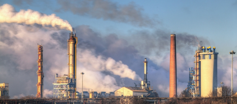 Role of Environmental Pollution in Irritable Bowel Syndrome
