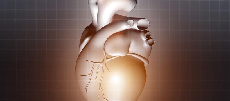 Statin Drugs, Cholesterol and Heart Disease: Myth vs. Reality