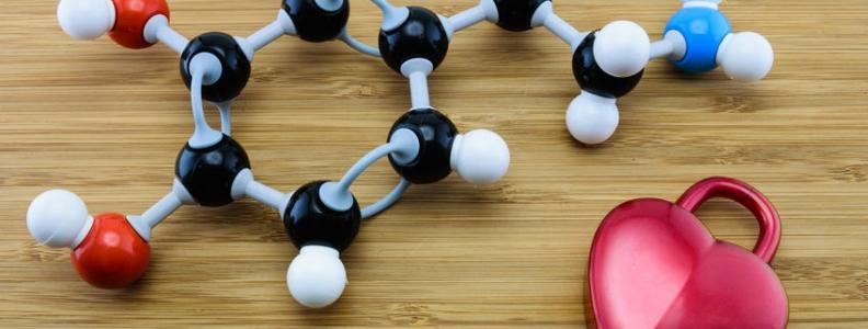 Dopamine and Social Bonding