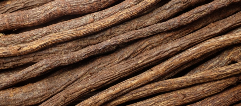 Licorice Extract for Parkinson's Disease