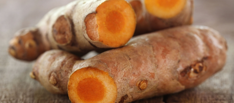 Curcumin May Help Overcome Drug-Resistant Tuberculosis