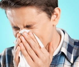 Seasonal Allergies Treat the Cause—Go to the Gut