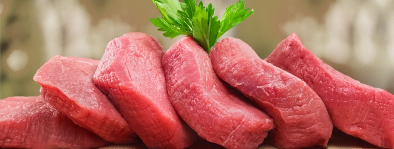 Controversies Surrounding High-Protein Diet Intake: Satiating Effect and Kidney and Bone Health