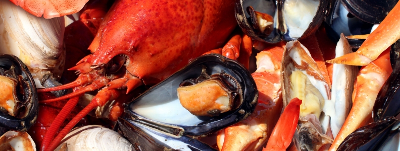 Maternal Consumption of Seafood and Child Neuropsychological Development