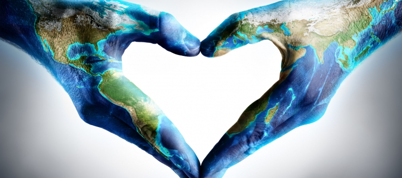 Wholehearted Healing: The Map of the Human System