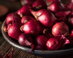 Anti-Cancer Uses of Onion Extract