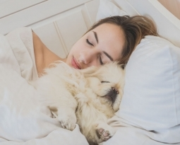 How Does Sharing a Bed with Your Dog Affect Your Sleep?