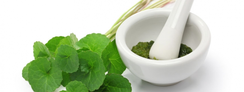 Centella asiatica: An Herb for Treating Keloids